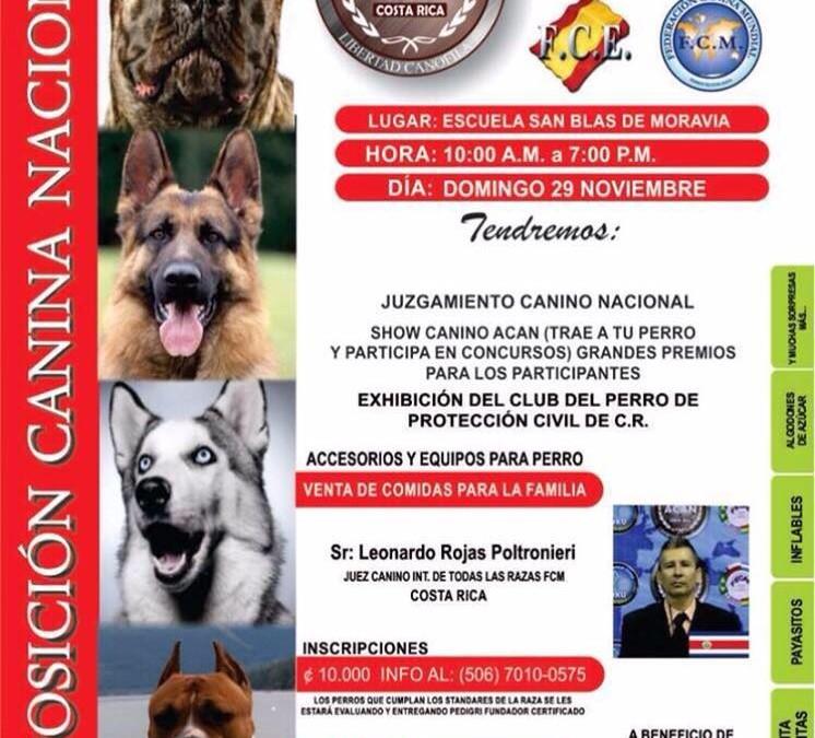 Exposición Canina Nacional – Nov. 29, 2015