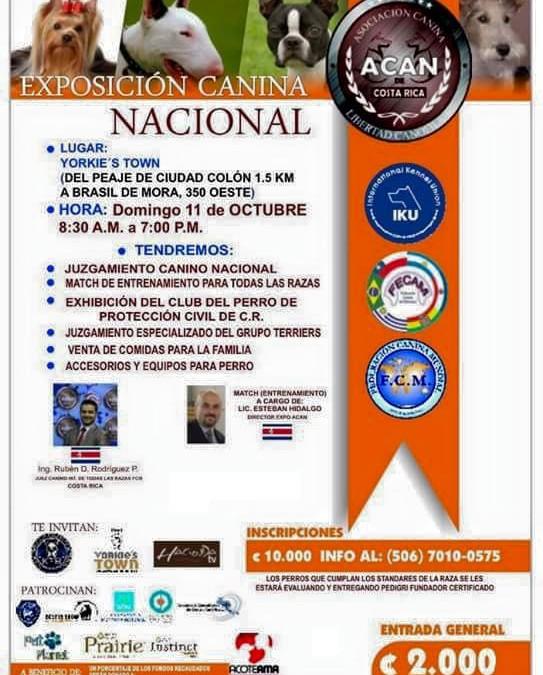Exposición Canina Nacional – Oct 11, 2015