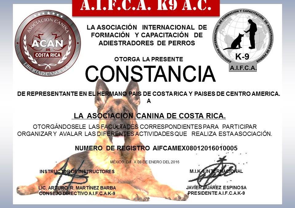 Certificación Internacional para guías Caninos en Obediencia Básica y Perro Cívico
