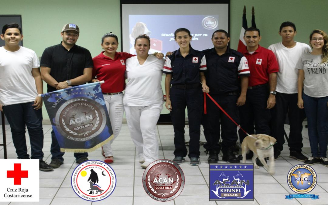 Capacitación Primeros Auxilios Caninos y Bienestar Canino, al cuerpo de voluntarios de Cruz Roja Puntarenas