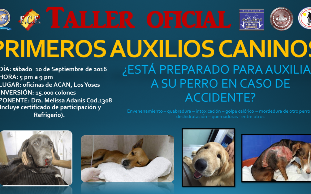 TALLER PRIMEROS AUXILIOS CANINOS