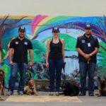 Entrenadores Caninos Profesionales ACAN