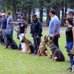 fotos guias caninos ACAN